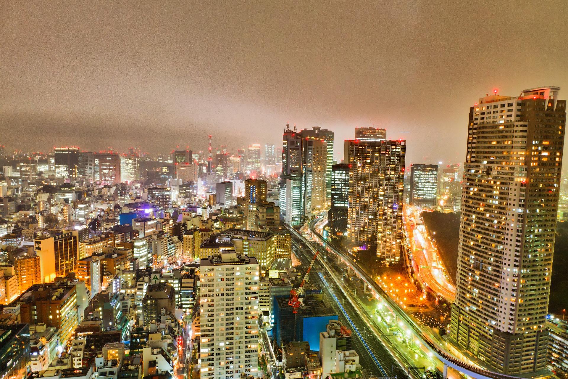 The Japanese Social Insurance System