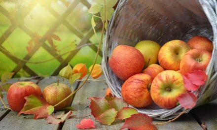 りんごを使った簡単お菓子レシピ6選