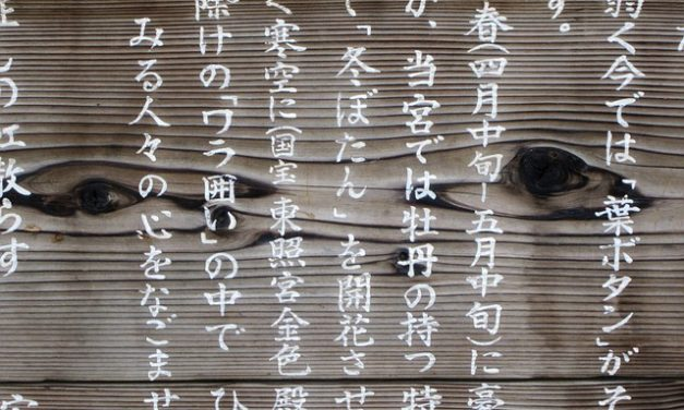 How Important Is It to Learn Japanese?