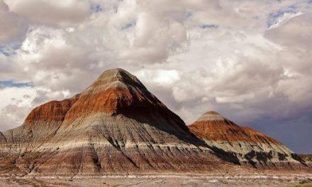 化石の森国立公園やツーソンを観光!アリゾナ縦断ロードトリップ3日目